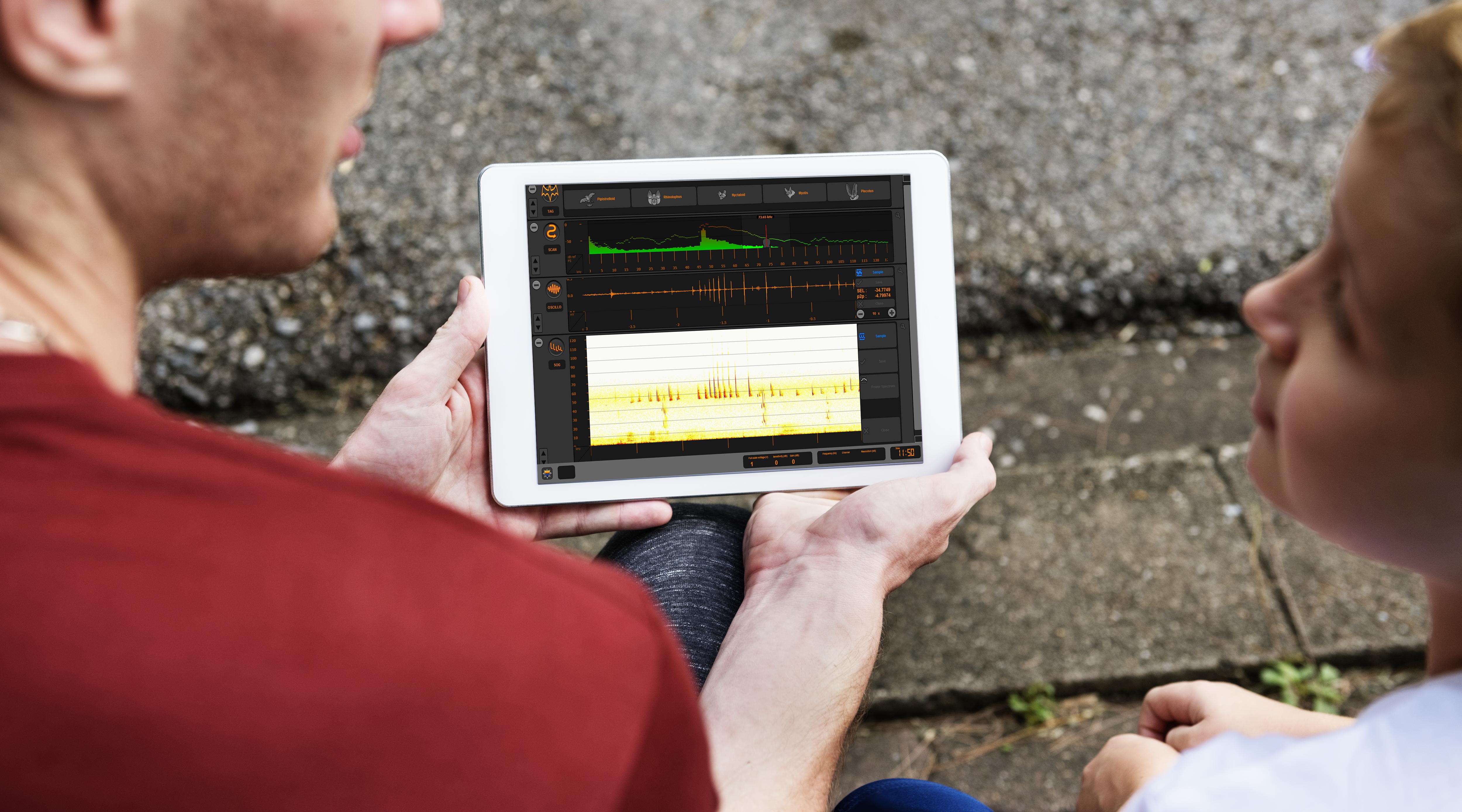 soundchaser pro sur tablette logiciel identification chauves souris hétérodyne expansion de temps fichier wav trigger enregistrement actif full spectrum 384Khz