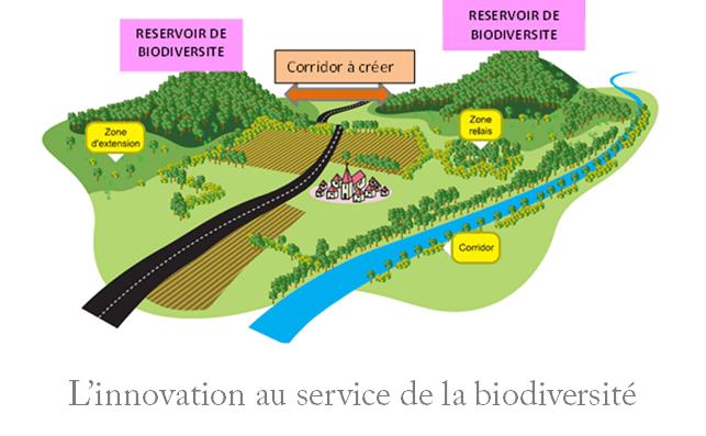 Suivi des corridor biologique par piège photographique  Trame verte et bleu TVB réservoir biologique biomimétisme innovation au service de la biodiversité suivi acoustique bushnell browning moultrie reconnyx